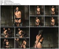 126488832_lustfulintentpart1.jpg