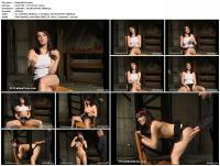 126489658_playfulpart1.jpg