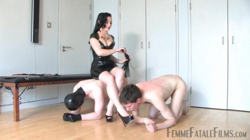 Team Slave – Lady Sophia Black. 15 Apr 2019. femmefatalefilms.com (1862 Mb)