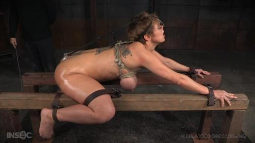 Red Hot Darling In Red Hot BDSM Scene – Dee Williams (Red Hot Part 3). Apl 16 2016. RealTimeBondage.com (1951 Mb)