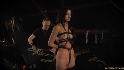 Throne of Torment – Alexi Star. SubSpaceLand.com (661 Mb)