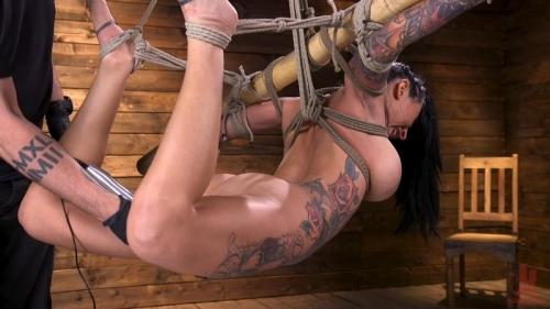 Tattooed Slut Brutalized in Bondage and has Squirting Orgasms – Lily Lane. 14 Mar 2019. Hogtied.com (1518 Mb)